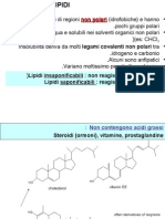 Lipidi.ppt 1