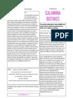 Boletín de Calamina Botines n0