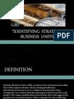 26626800 Identifying Strategic Business Units[1]