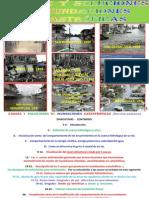 modelos causas y soluciones.pdf