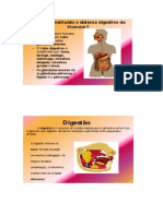 Resumo - Sistema Digestivo
