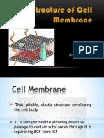 Unit Membrane