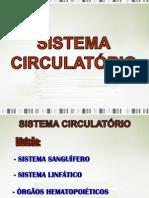 Anatomia do Sistema Circulatório minha