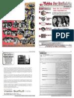 Visión Sur rufinista pdf 2011