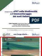 Attività APAT sulla biodiversità dei suoli italiani