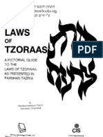 The Laws of Tzoraas Hebrewbooks_org_47038