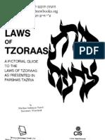 The Laws of Tzoraas Hebrewbooks_org_47038