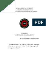 Tesis Alvaro Silva Almacenamoiento e Inventarios