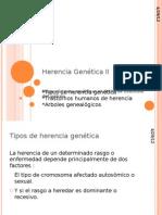 Herencia Genética II