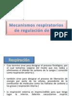 Mecanismos respiratorios de regulación de pH
