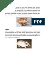 Jenis Hamster & Ikan
