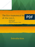 The Eco-Ananatomical Study