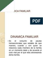Dinamica Familiar (1)