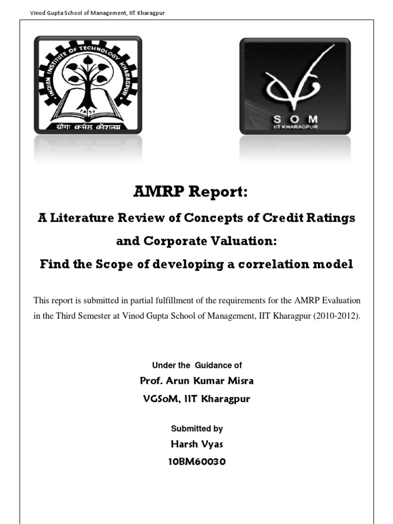 How to write literature review on credit card debt?