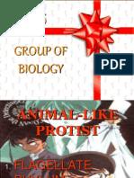 Flagellate n Sporozoan Phylum
