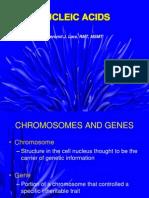 04 Nucleic Acids