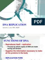 05 Dna Replication