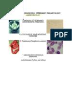 Pdf medical atlas