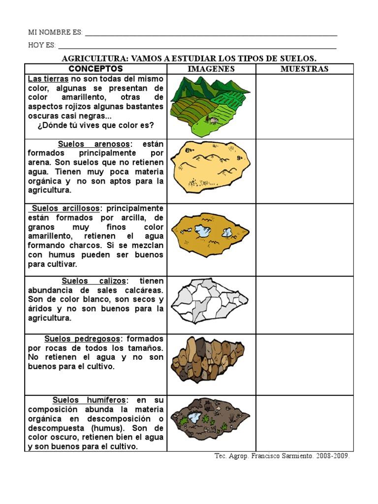Tipos de suelos hoja de trabajo for Suelo organico para dibujar