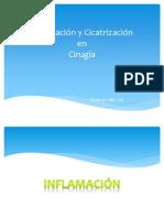 inflamacion y Cicatrizacion