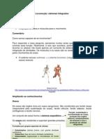 33_Locomoção_Ossos e músculos