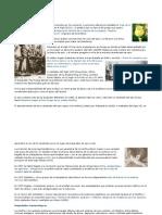 Historia de los opiáceos