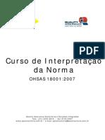Apresentação_interpretação OHSAS_18001-2007