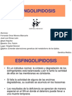 esfingolipidosis