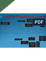História da Imunoprevenção no Brasil 3