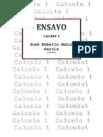 ensayo CALCULO