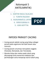 PPT KEL 5
