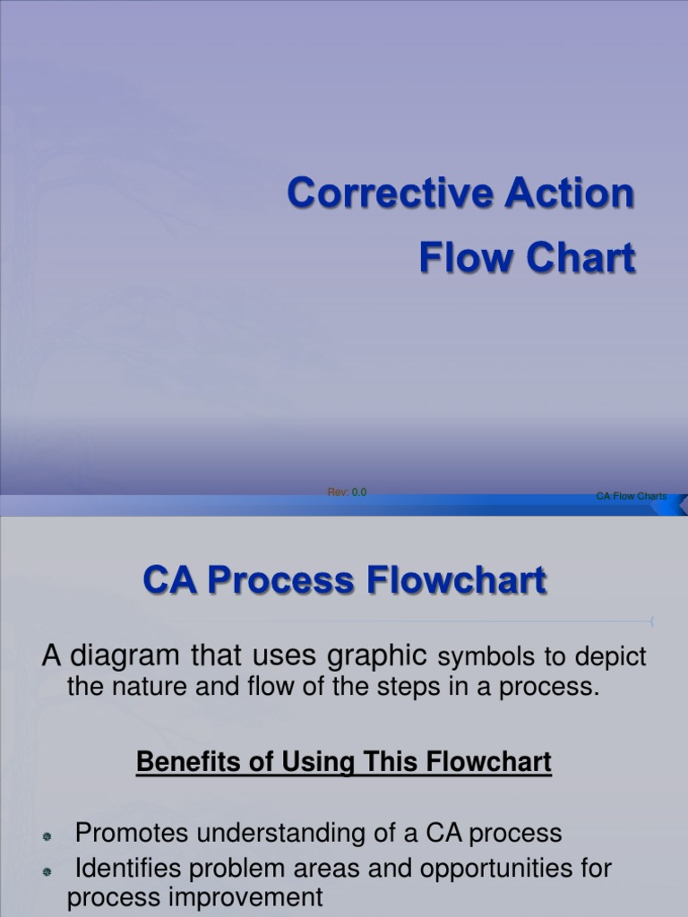 Corrective Action Flow Chart Technology Computing