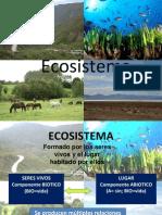 Bio Ecosistema