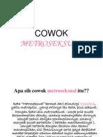 COWOK METROSEKSUAL