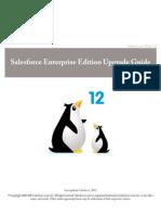 Sales Force Ee Upgrade Guide