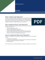 BCS_tb_bcreporter.pdf.c