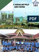 Riau Andalan Pulp & Paper