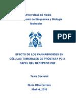 CANNABINOIDES Y CÁNCER DE PRÓSTATA (tesis doctoral de Nuria Olea Herrero)