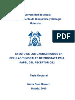 Indicador de nivel de PSA de la próstata agrandada 1.0