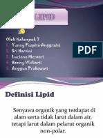 Lipid Klmpok 7