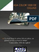 casa_celor_1000_de_oglinzi