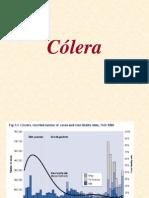 Cólera_2012