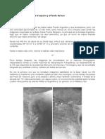 Malvinas – Historias desde el espacio y el fondo del mar - fotos