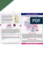 Cadeirinhas Folheto PDF