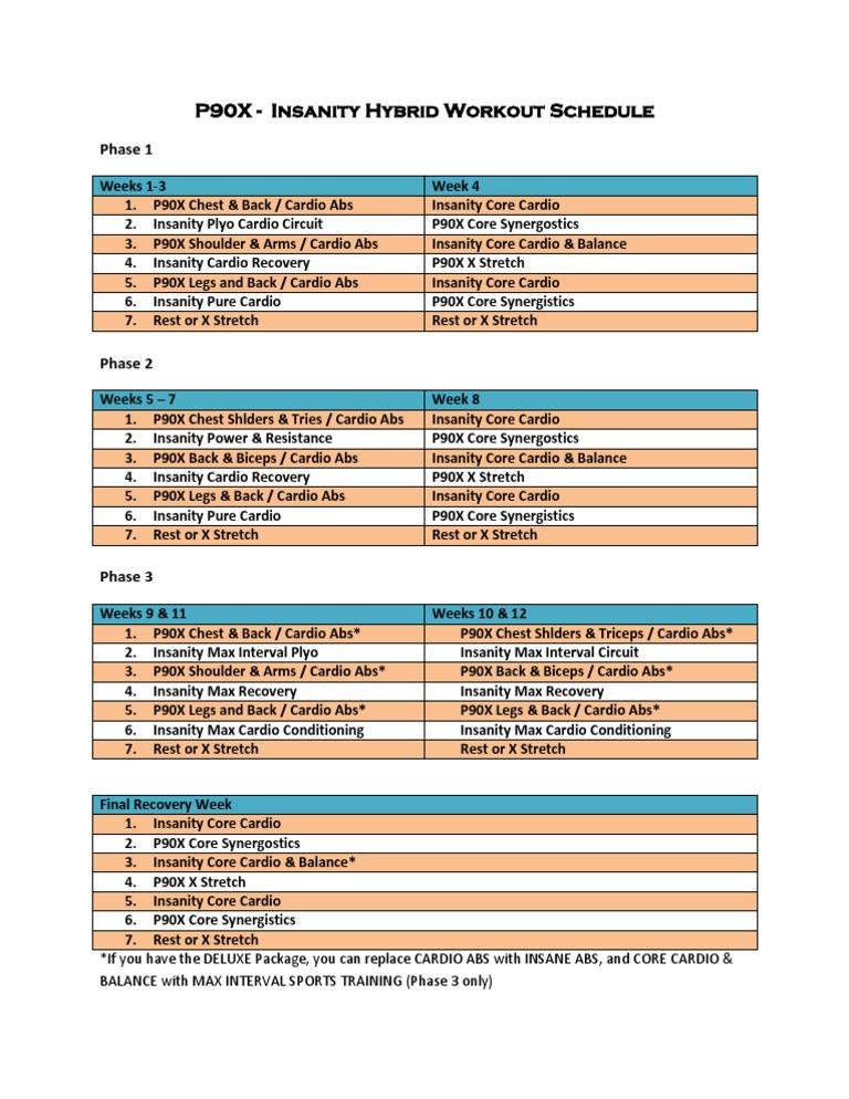 p90x Insanity Hybrid Workout Schedule