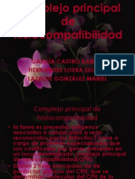 Eq 1 b Complejo Principal de ad