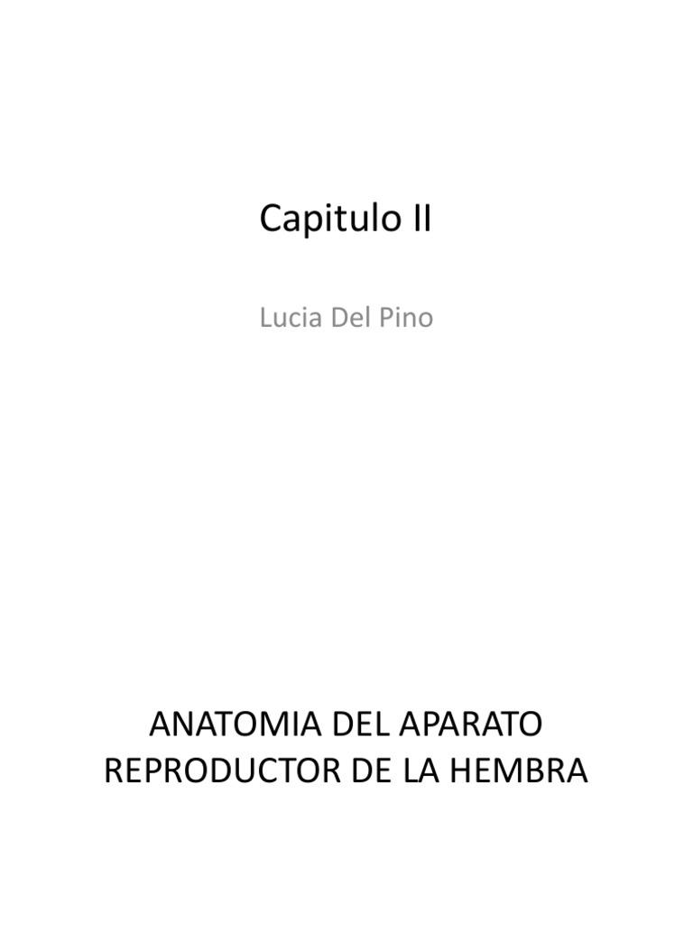 Capitulo II REPRODUCCION
