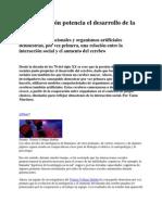 La cooperación potencia el desarrollo de la inteligencia