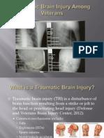 Traumatic Brain Injury Among Veterans