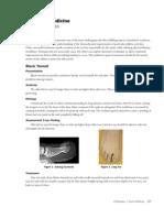 Chapter 3h Sports Medicine